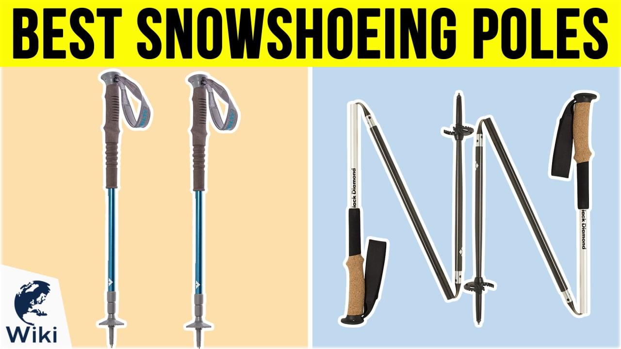 10 Best Snowshoeing Poles
