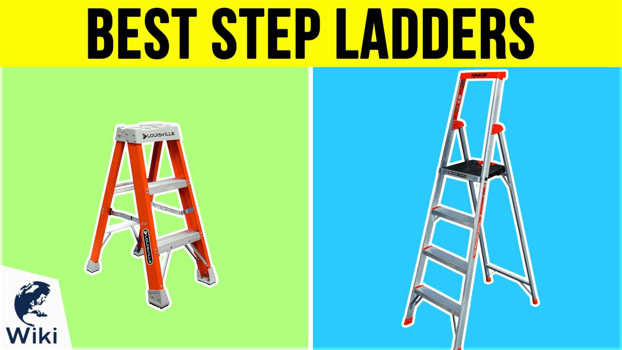 10 Best Step Ladders