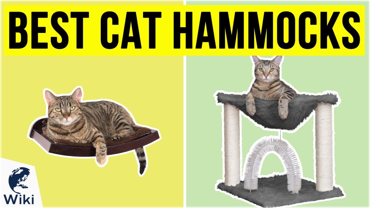 10 Best Cat Hammocks