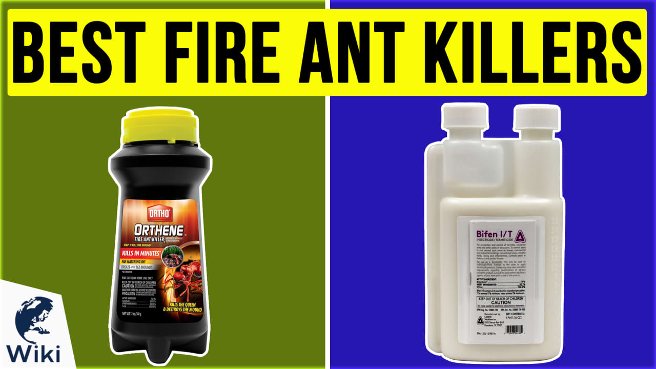 10 Best Fire Ant Killers