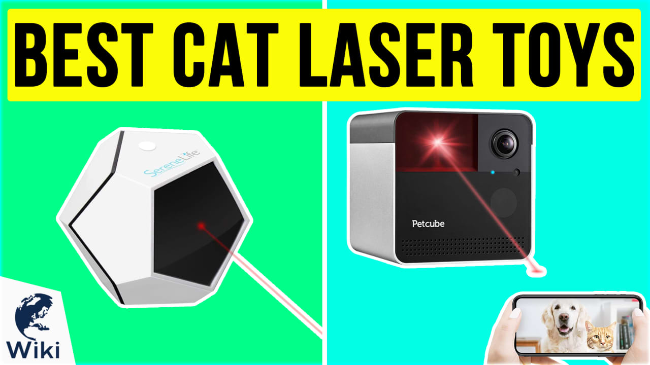 10 Best Cat Laser Toys