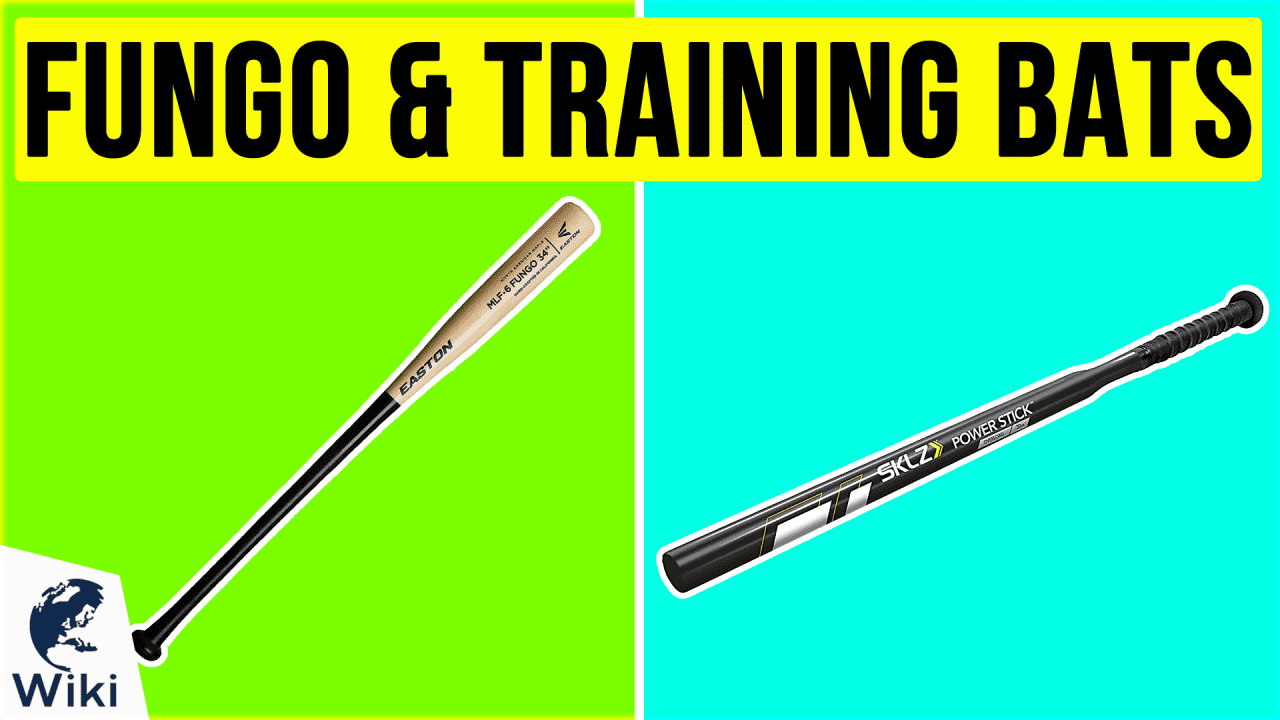 10 Best Fungo & Training Bats
