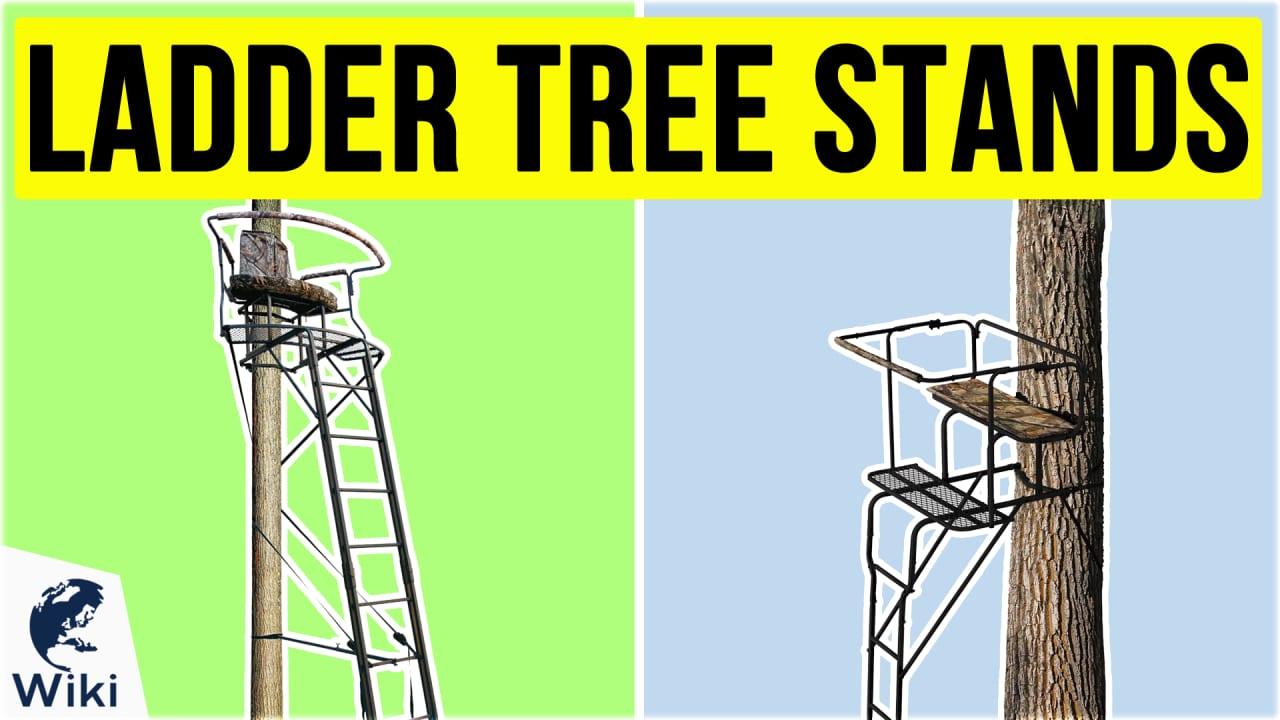 7 Best Ladder Tree Stands