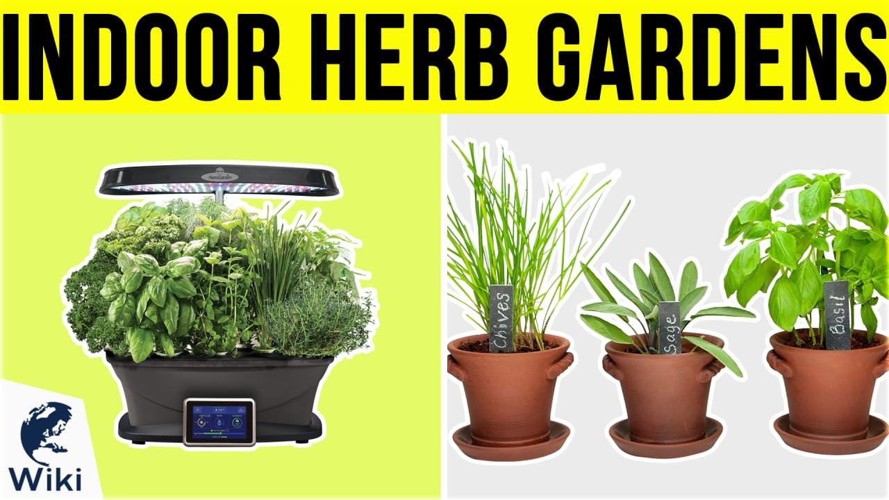 10 Best Indoor Herb Gardens