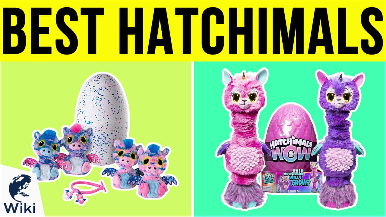 10 Best Hatchimals