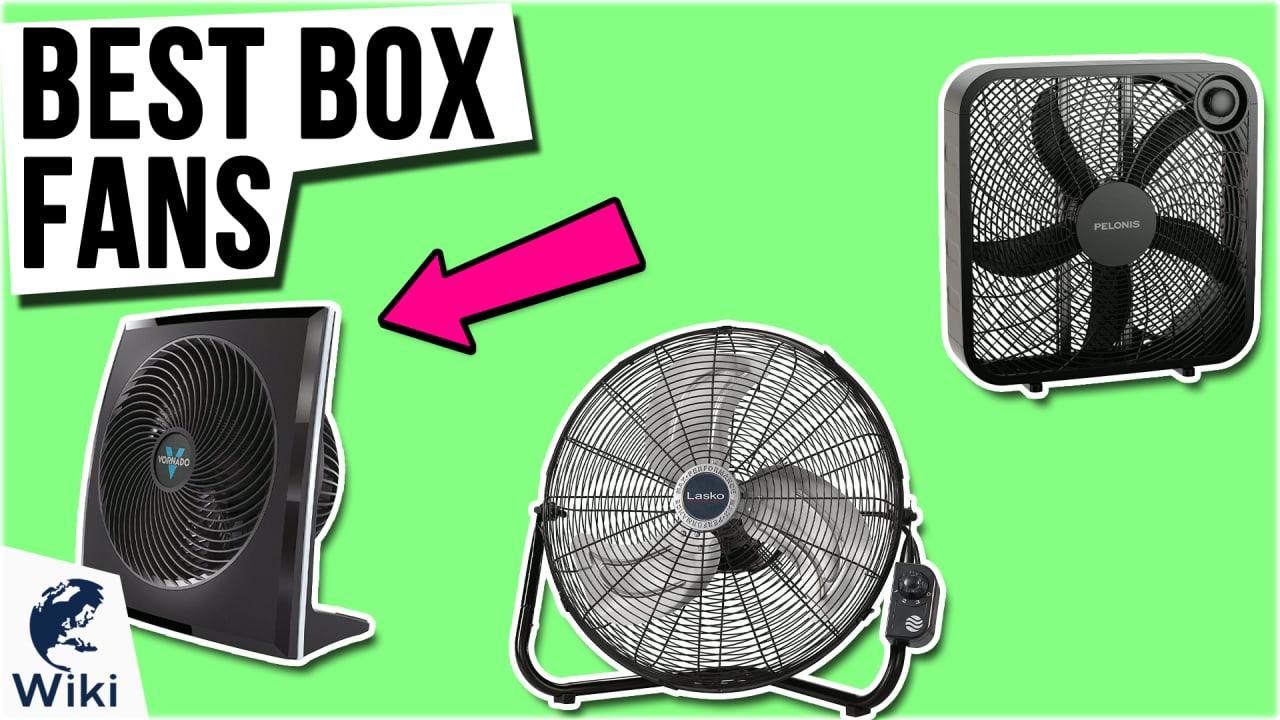 10 Best Box Fans