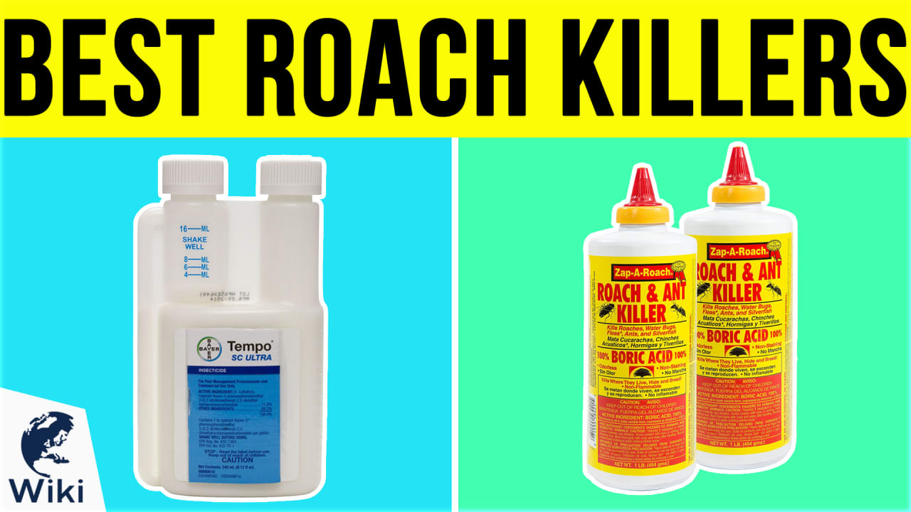 10 Best Roach Killers