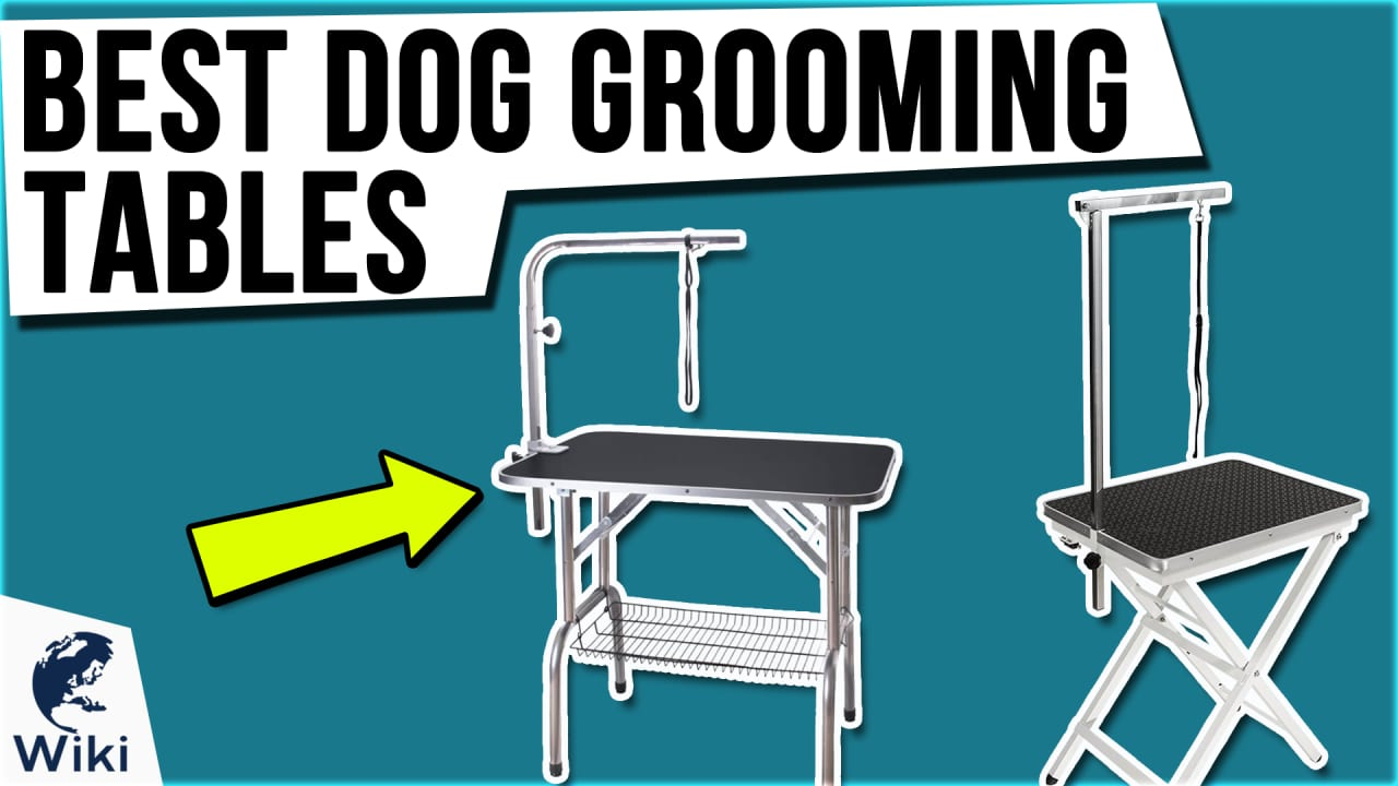 10 Best Dog Grooming Tables