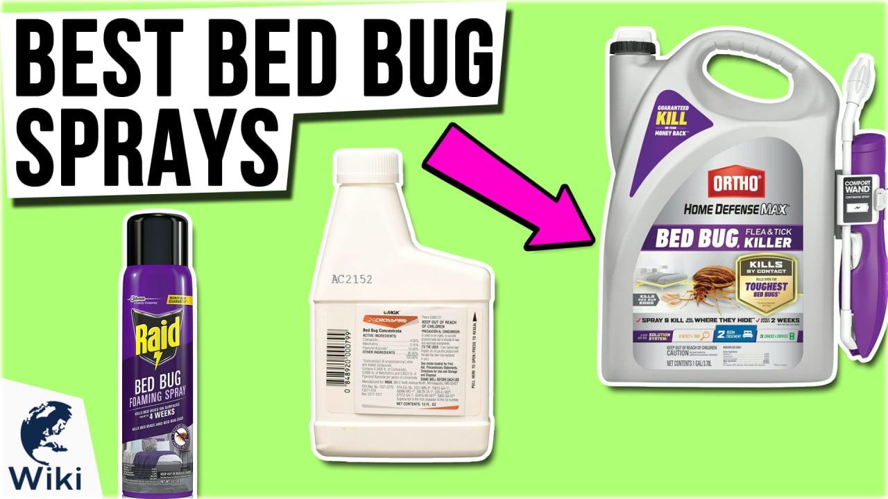10 Best Bed Bug Sprays