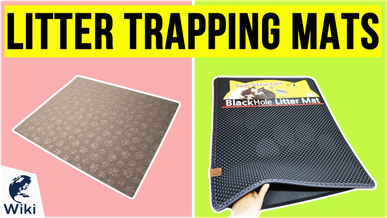 10 Best Litter Trapping Mats