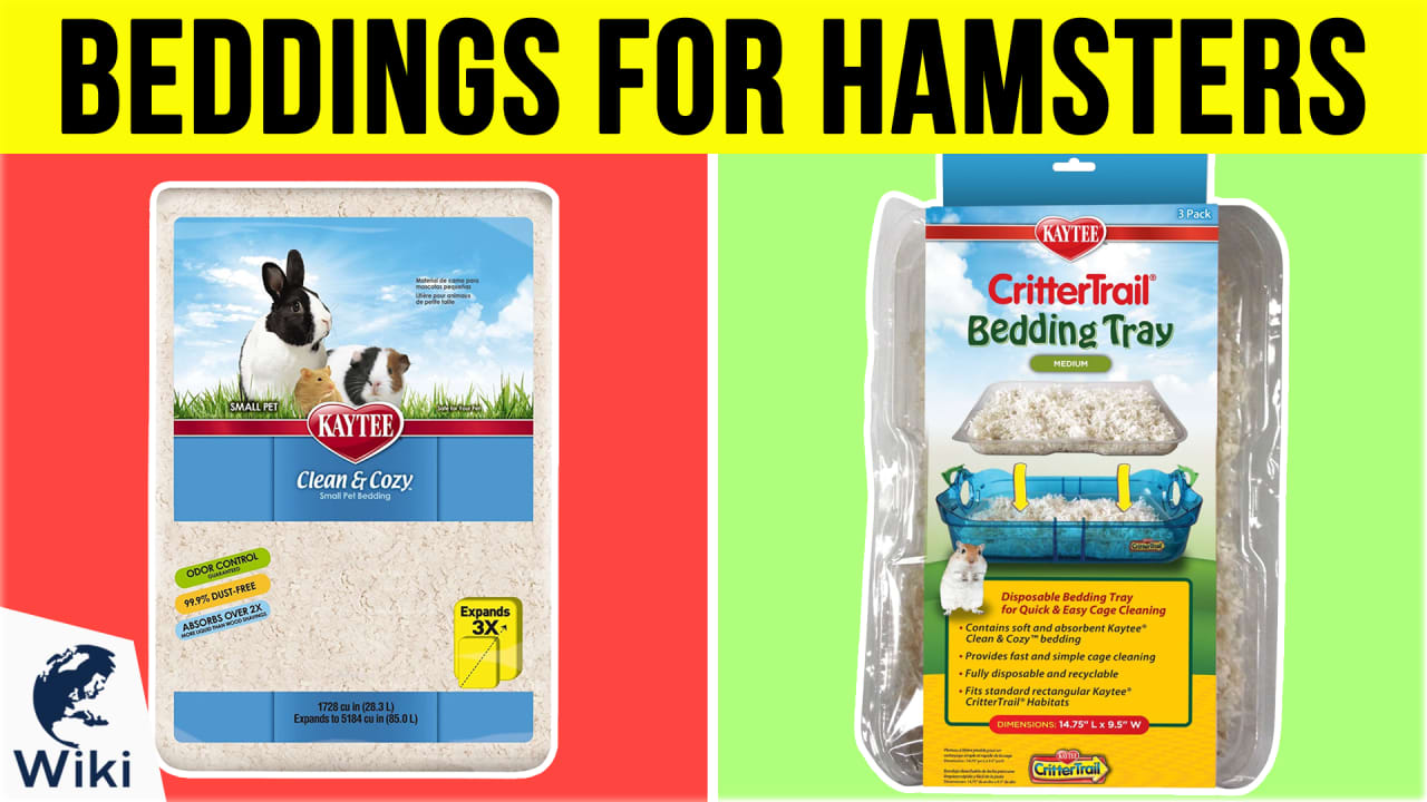 7 Best Beddings For Hamsters