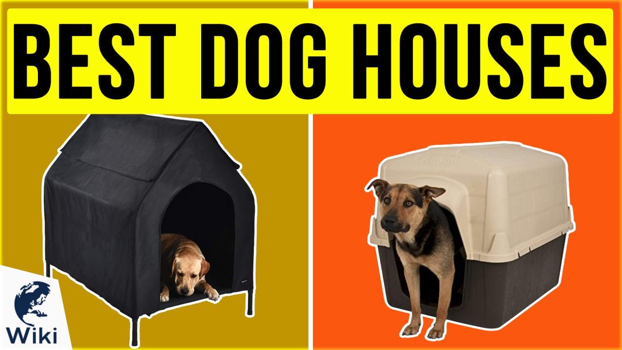 10 Best Dog Houses