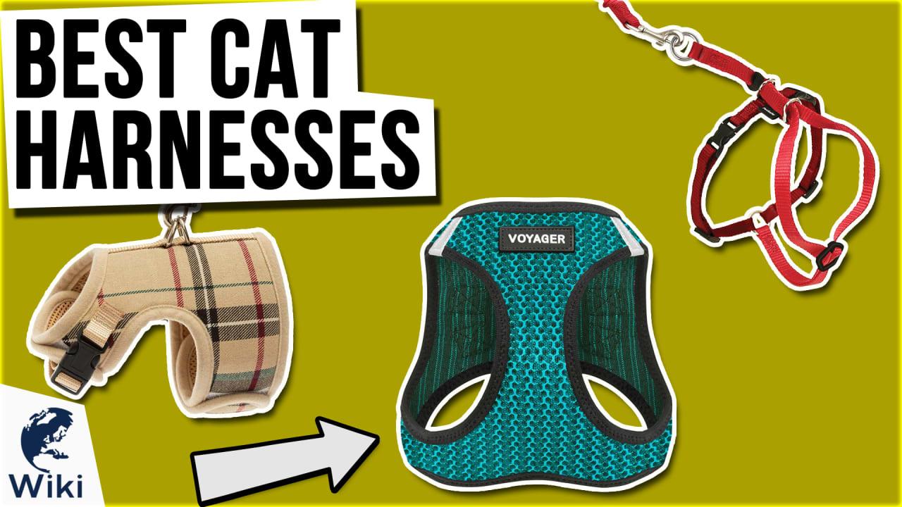 10 Best Cat Harnesses