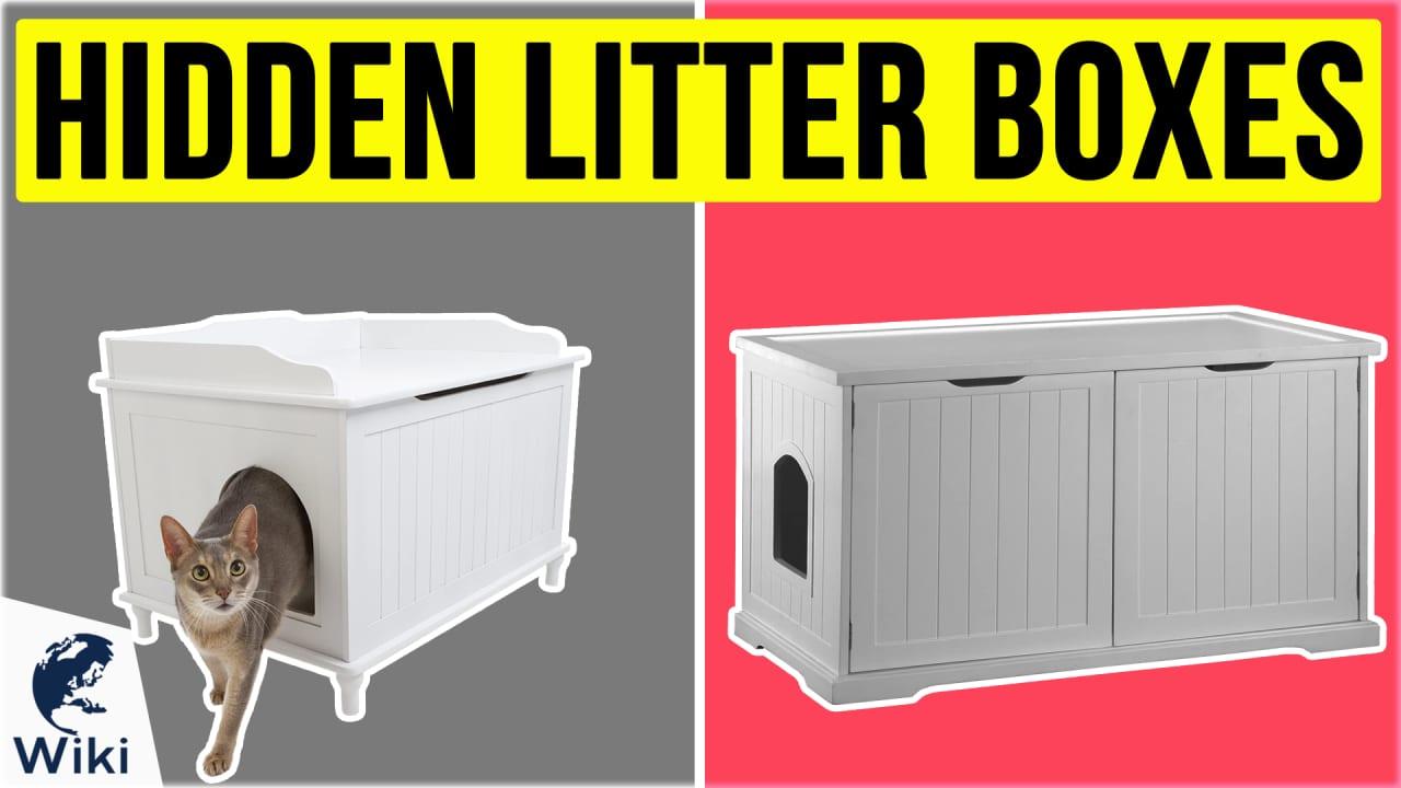 10 Best Hidden Litter Boxes