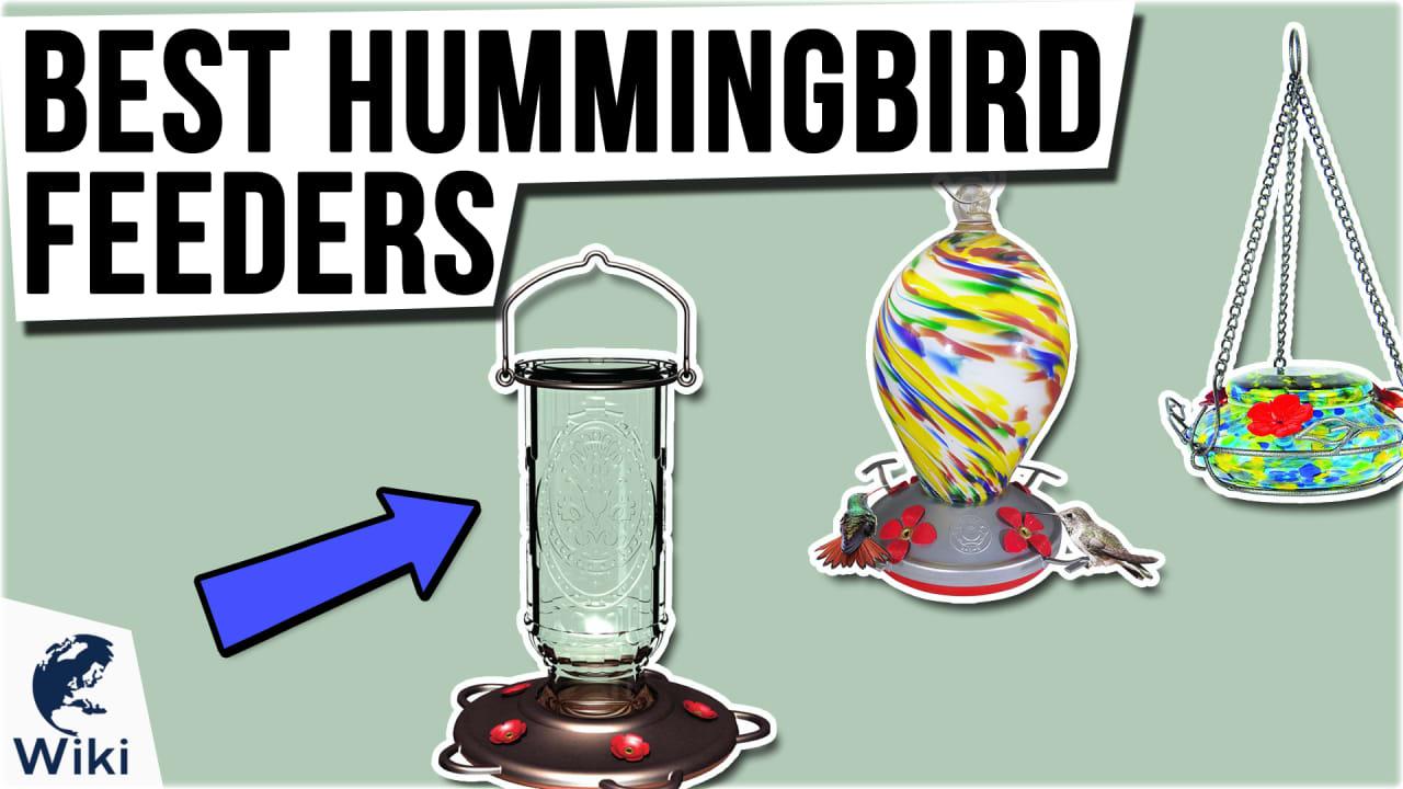 10 Best Hummingbird Feeders