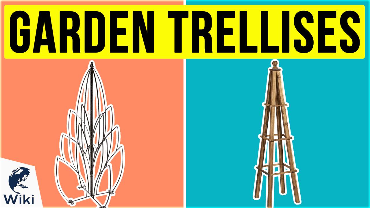 10 Best Garden Trellises