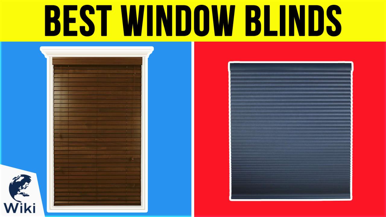 10 Best Window Blinds