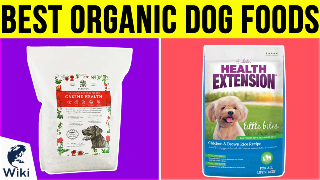 10 Best Organic Dog Foods