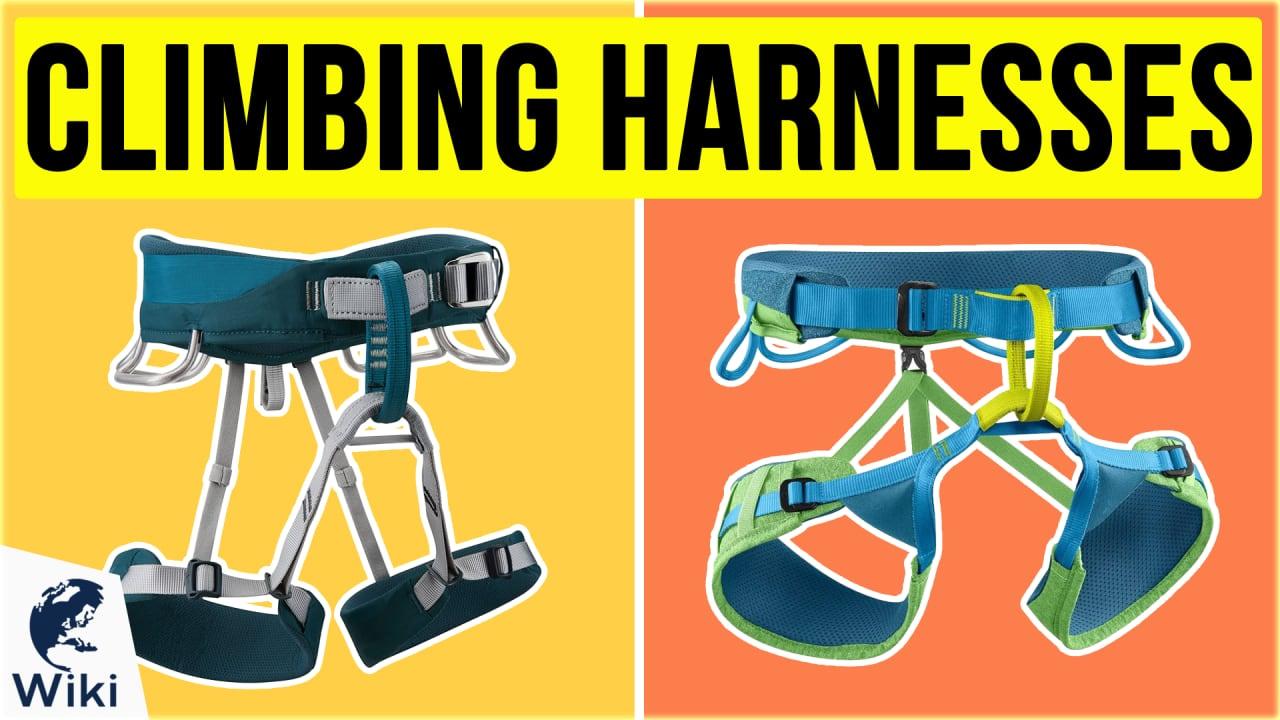 10 Best Climbing Harnesses