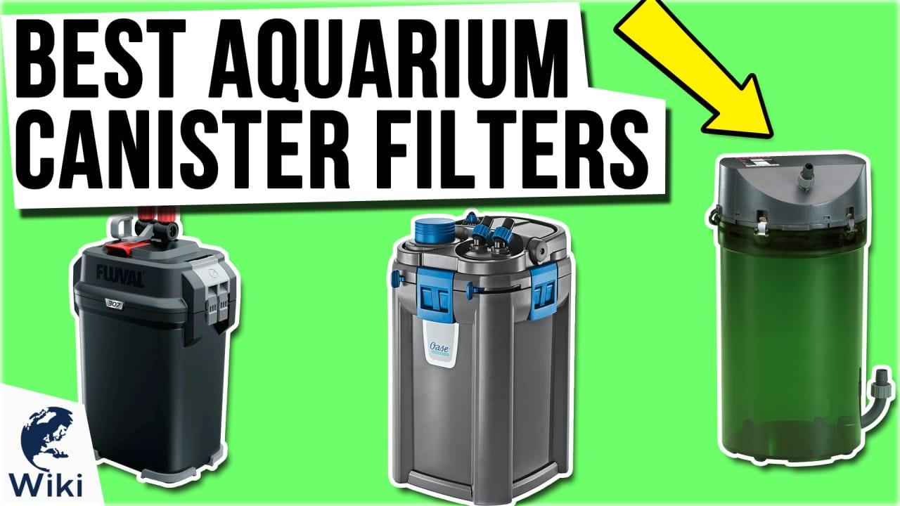 9 Best Aquarium Canister Filters
