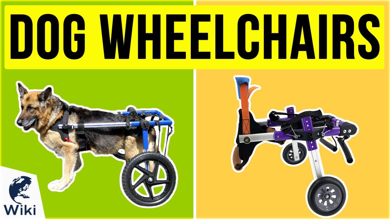 8 Best Dog Wheelchairs