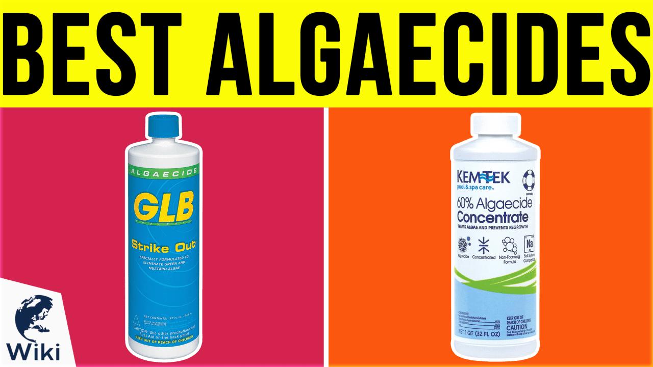 10 Best Algaecides