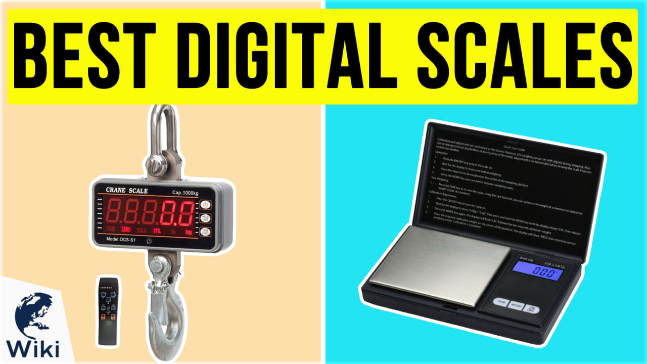 10 Best Digital Scales