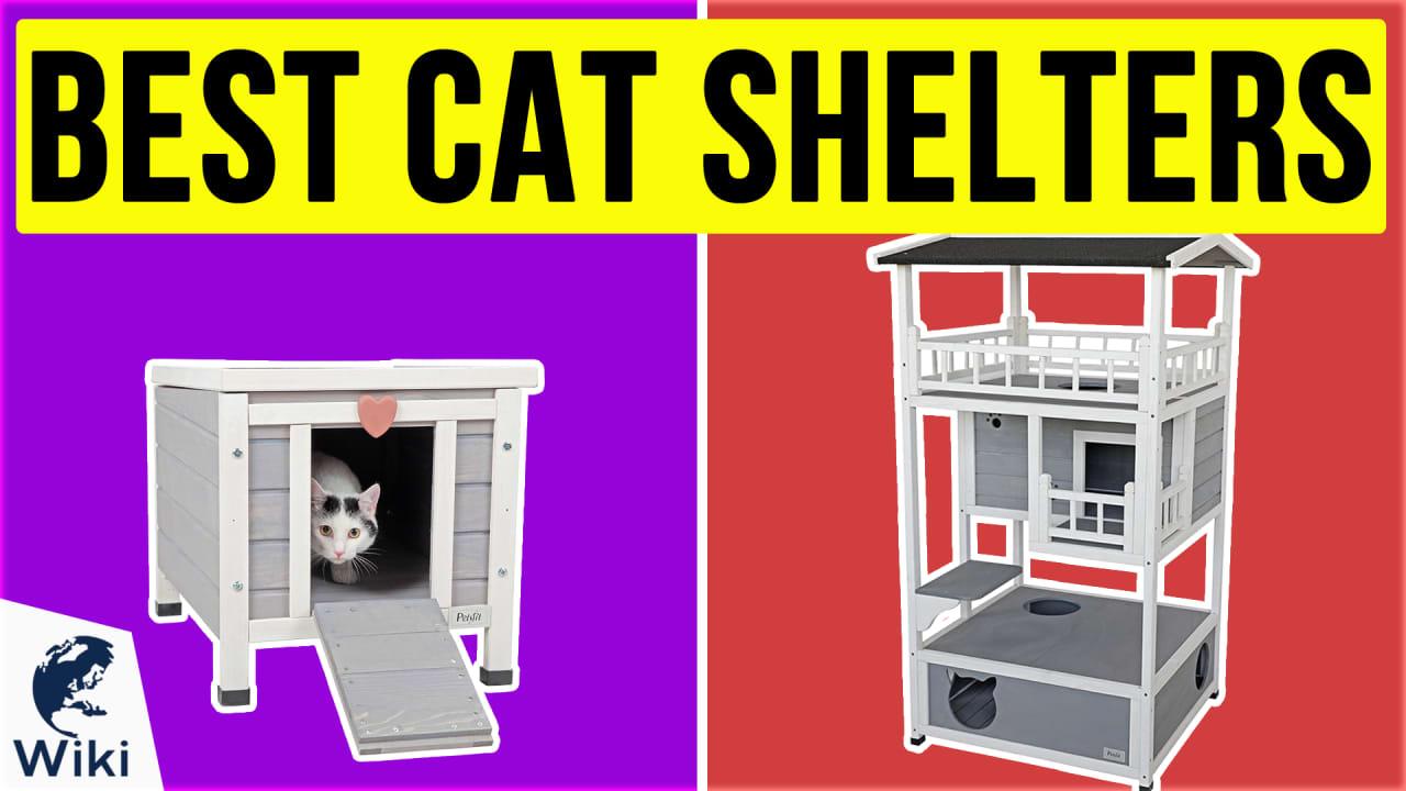 10 Best Cat Shelters