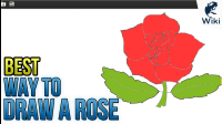 The Best Way To Draw A Rose