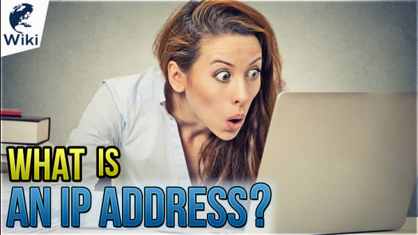 What Is An IP Address? How Do I Find Mine?