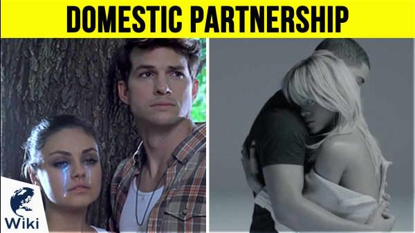 How Do I Make A Domestic Partnership?