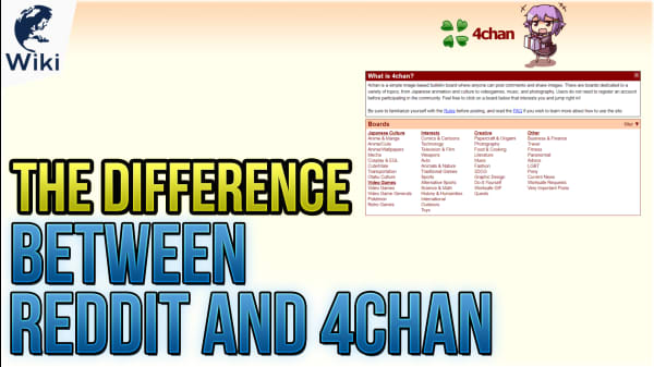 The Difference Between Reddit and 4Chan