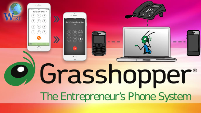 Grasshopper Review: 5 Fast Facts | Video Wiki