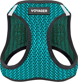 Voyager by Best Pet Supplies