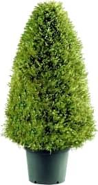 National Tree Company Juniper