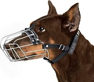 BronzeDog Wire Basket