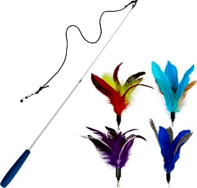 EcoCity Feather Toy