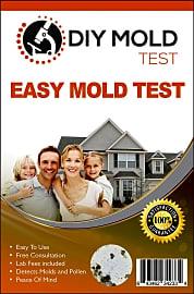 Mold Inspection Network DIY