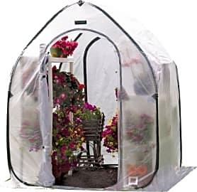 Flower House Pop-Up