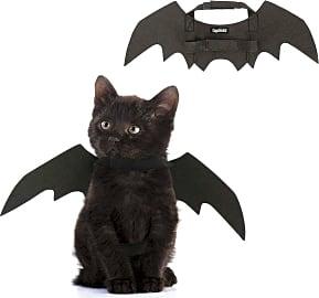 Coppthinktu Bat Wings