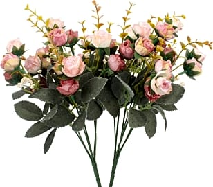 Duovlo Mini Rose