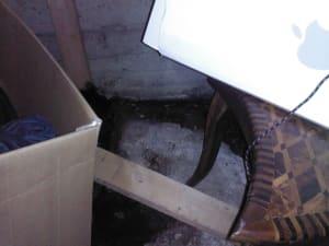 Crawlspace floor