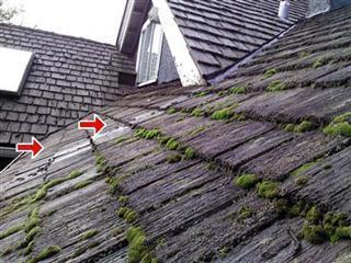 Vancouver Cedar Roof Deterioration