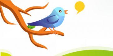 Twitter icon singing