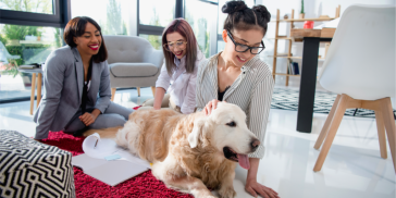 Women with a dog in the office