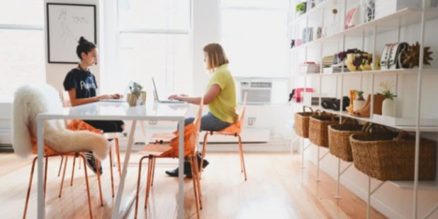 Two women at a startup