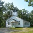 Friendship North Baptist Church in Detroit,AL 35552