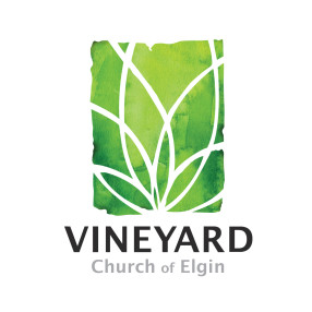 Vineyard Church of Elgin in Elgin,IL 60120
