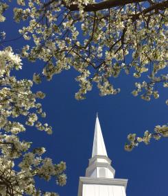Applewood Baptist Church in Wheat Ridge,CO 80033