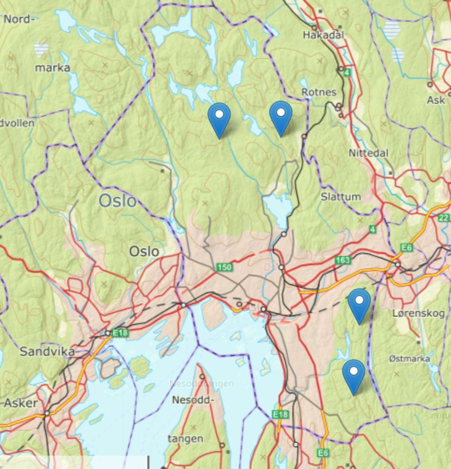 Det er ikke tatt bilder av ulv på noen av NINAs viltkameraer utplassert i Oslo i år.